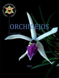 Nr. 1 Orchidėjos viršelis