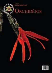 """""""Orchidėjos"""" 13"""