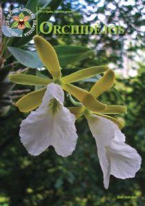 Orchidejos_22